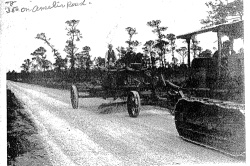 Amelia Road